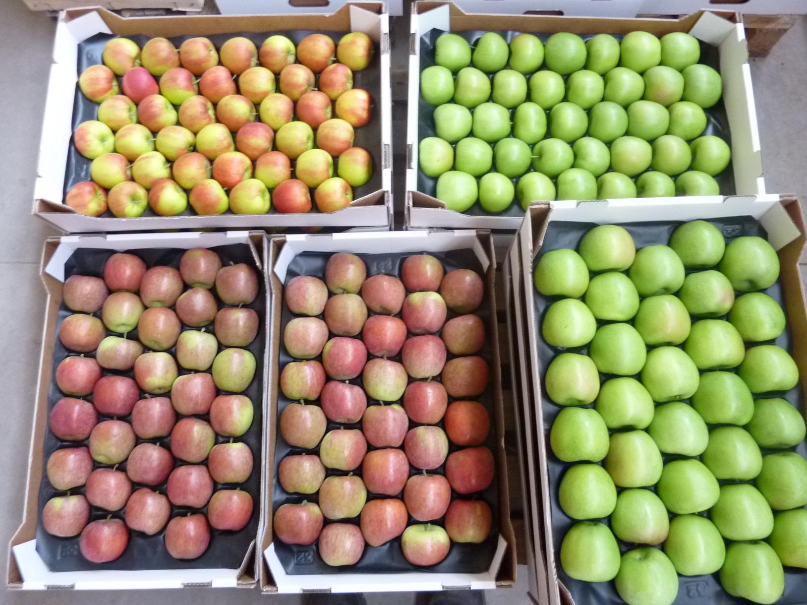 Gelegte Äpfel 2